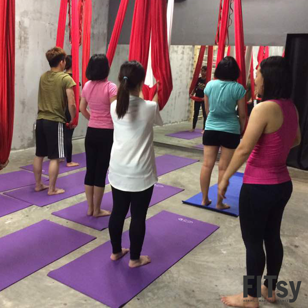 Teacher Training Program - Instructor Training Program - Aerial - Flying Yoga