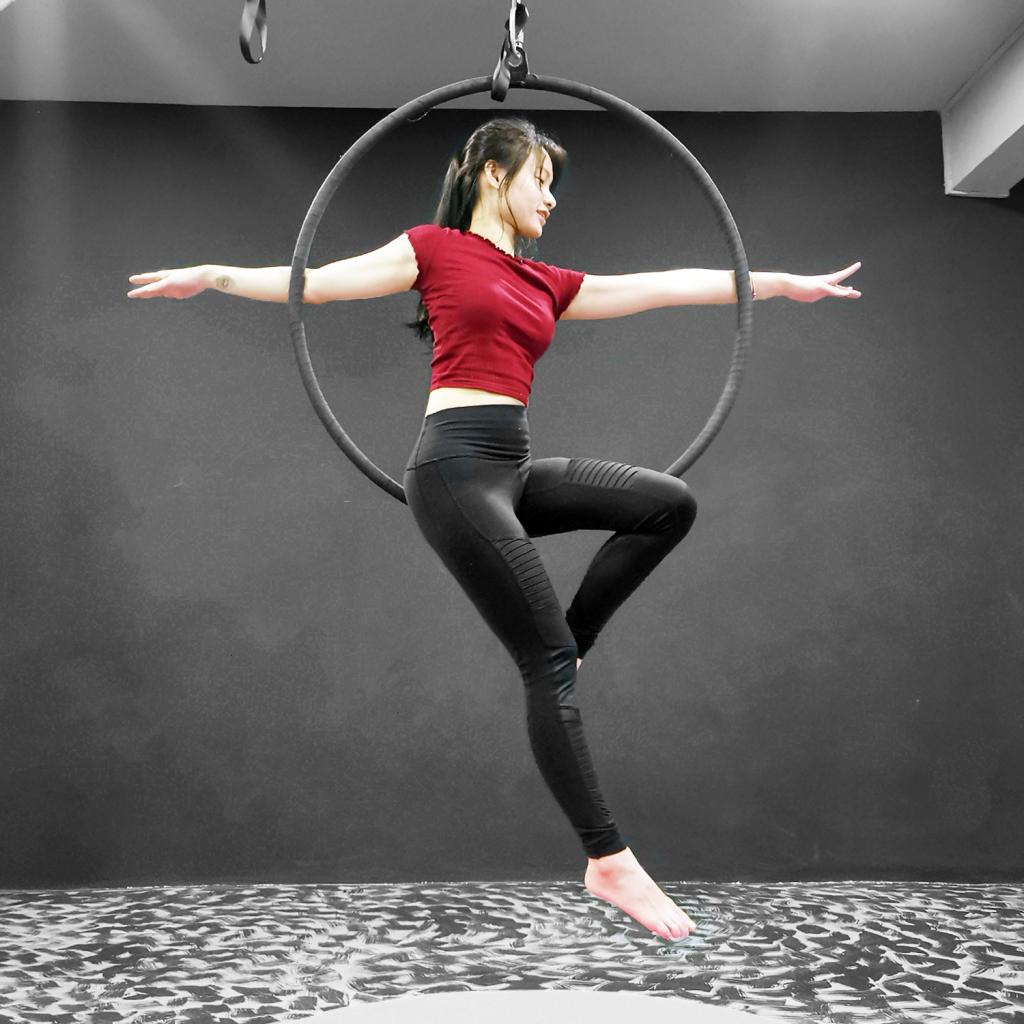 FITsy - Aerial Hoop | Lyra